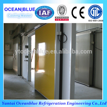 Heat Insulation PU Panel Cold Room Sliding Door