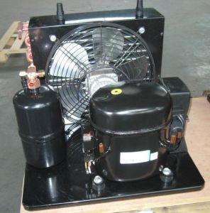 Purswave Wq110hc 1/3HP R134A Compressor Condensing Units for