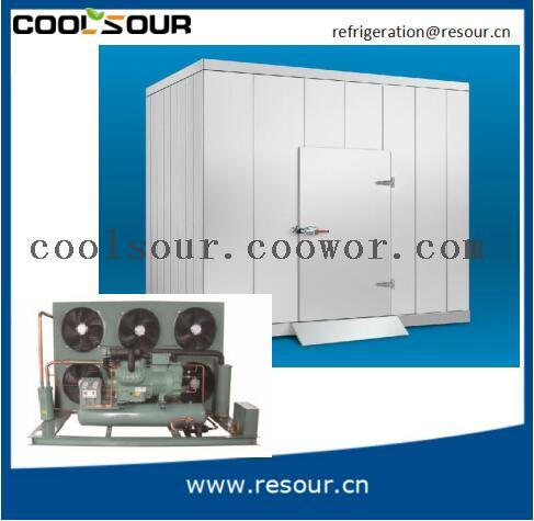 Walk In Freezer For Sale >> Coolsour Hot Sale Cold Room Walk In Freezer For Fruit Fish Meat