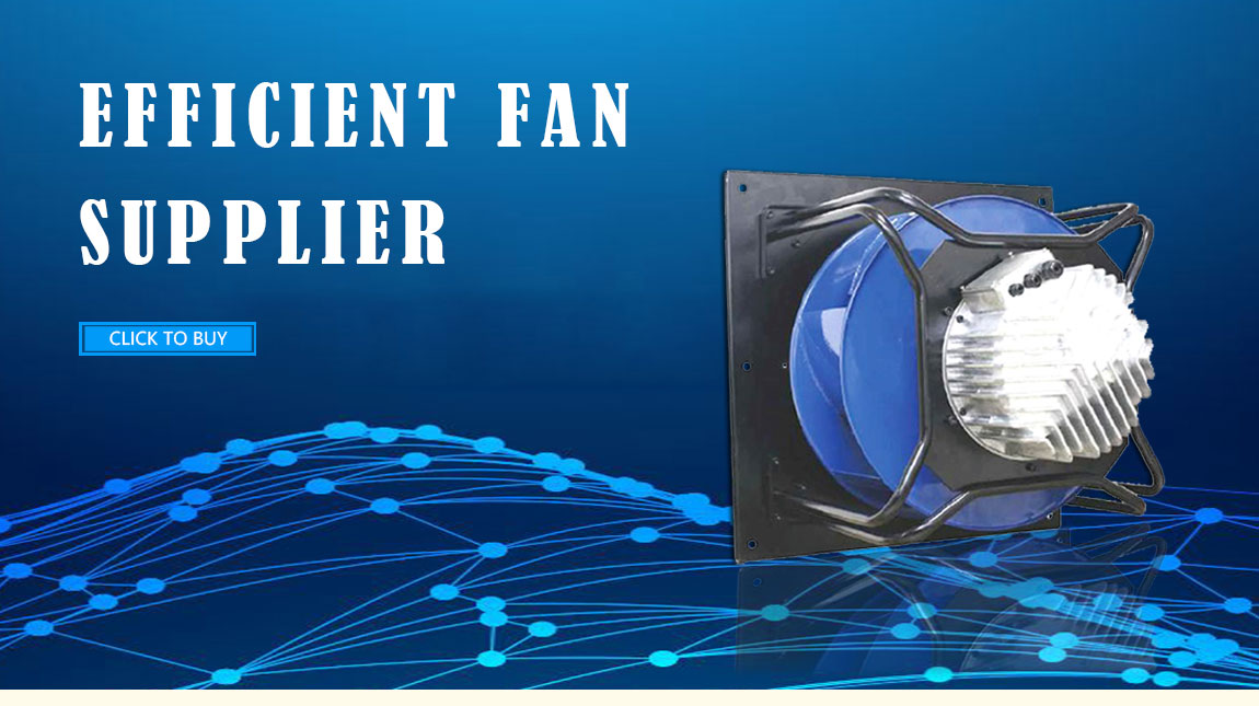 Wenling Dayang Electric Co Ltd Axial Fan Centrifugal Fan
